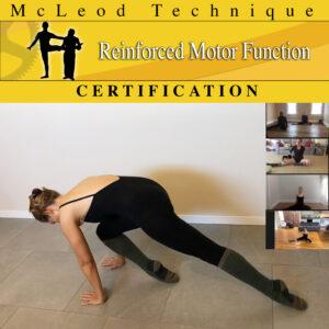 MT Reinforced Motor Function - Certification - Square